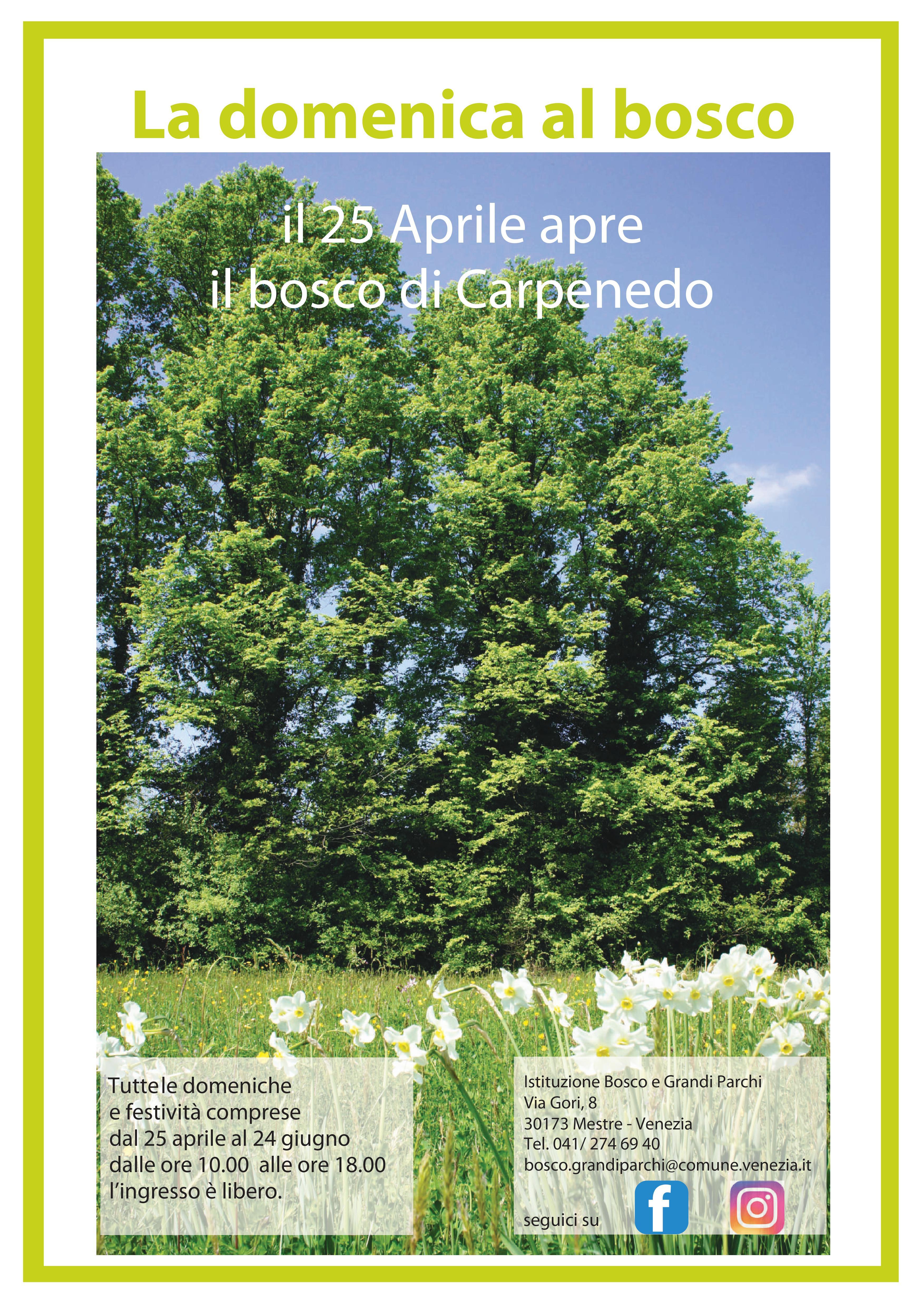 Locandina bosco carpenedo  - foto del bosco in primavera e informazioni apertura