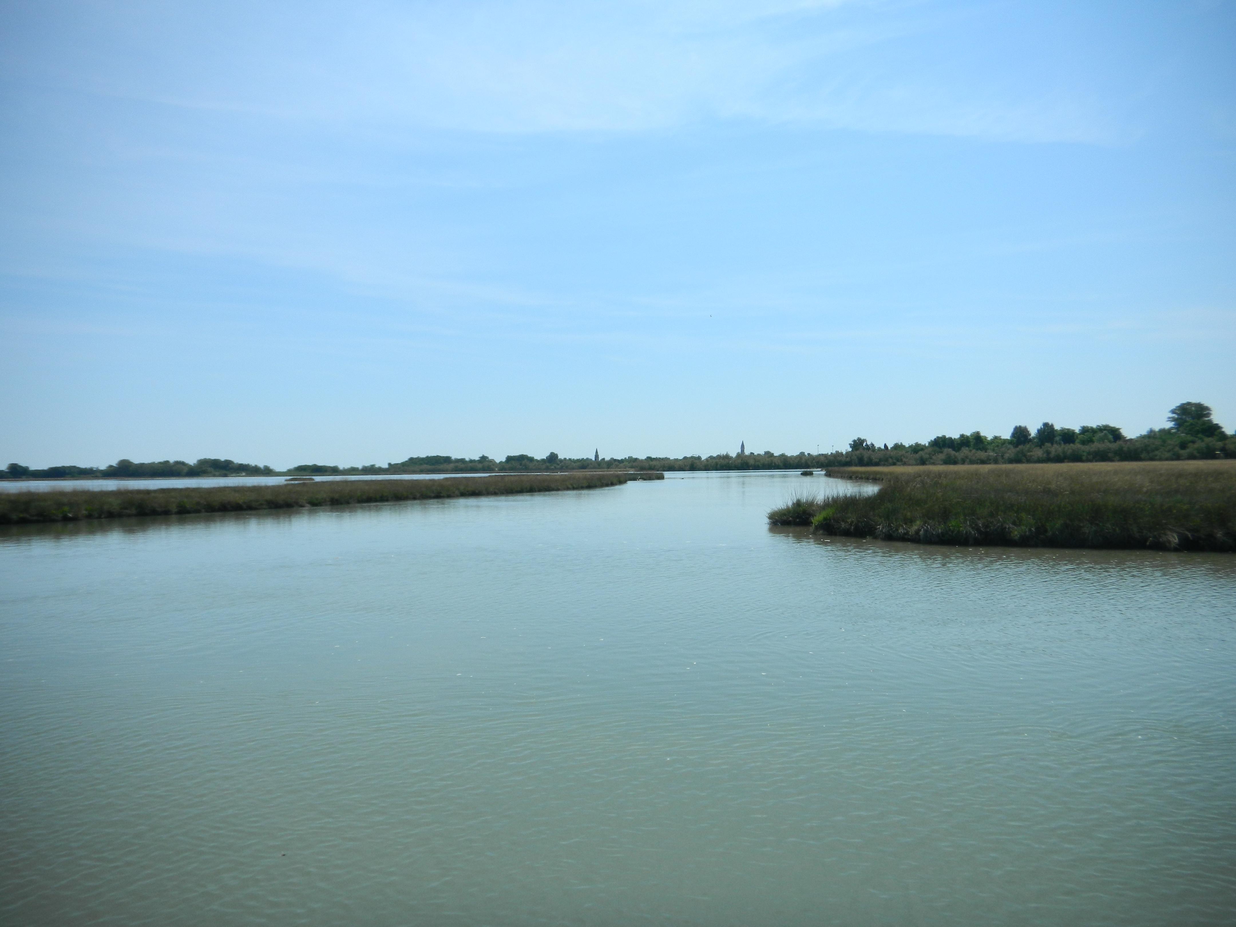 barene in laguna nord di Venezia