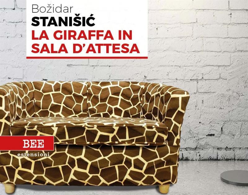 copertina libro La giraffa in sala d'attesa