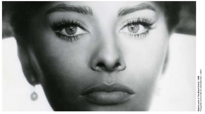 Sofia Loren foto dalla mostra - particolare