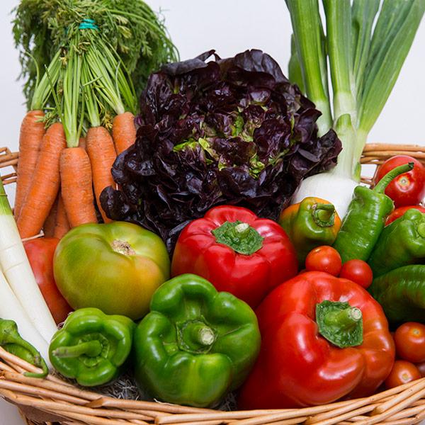 immagine di un cesto di verdura fresca