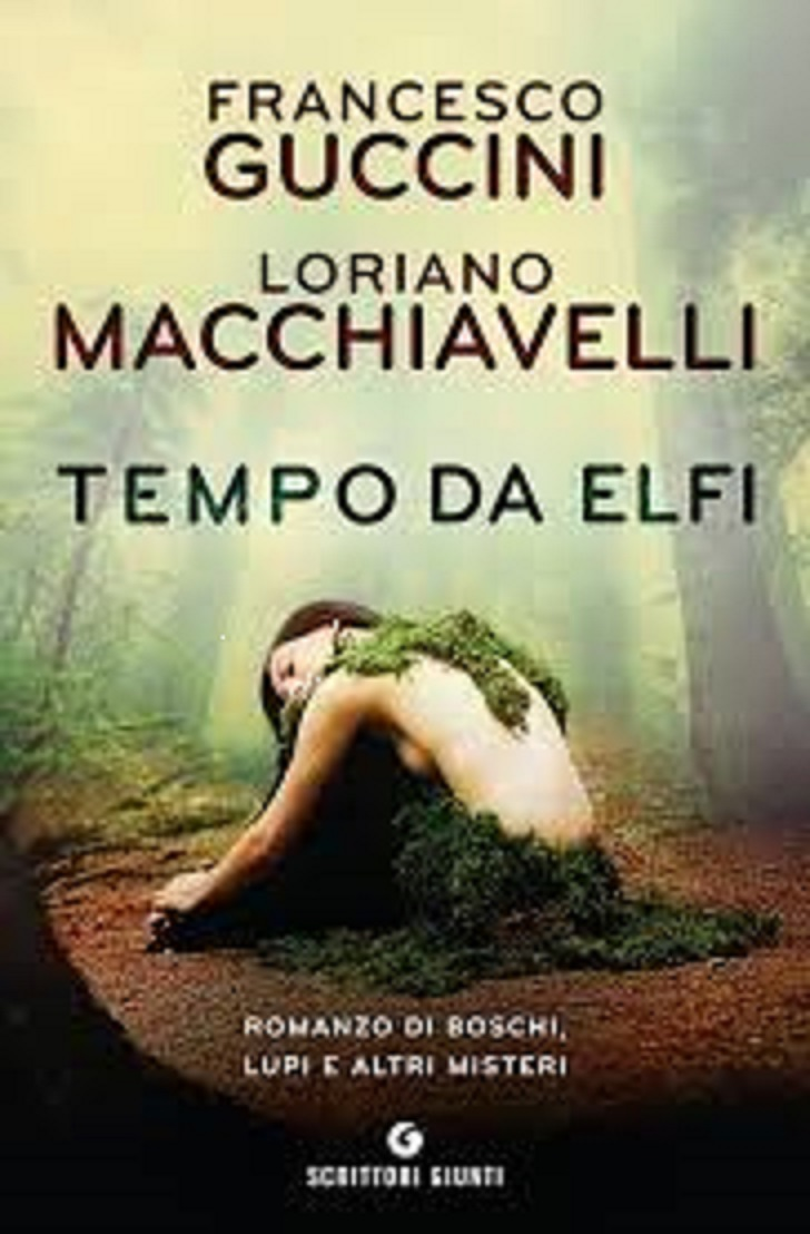 copertina libro Tempi da elfi