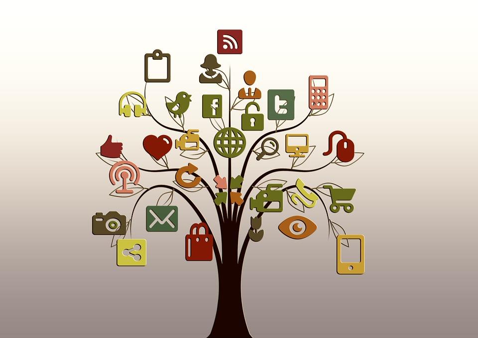 albero struttura reti