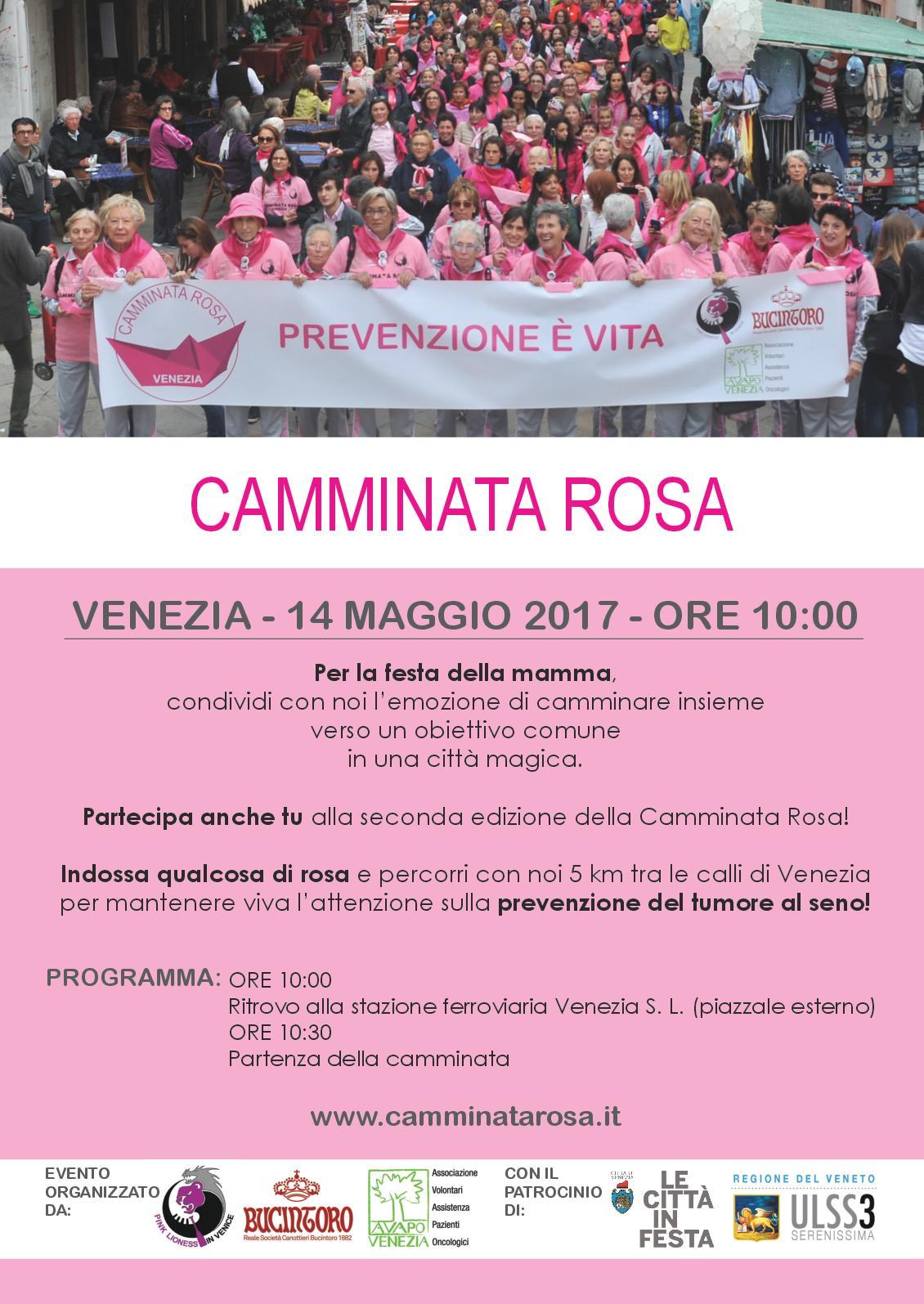 Locandina Camminata rosa 2017